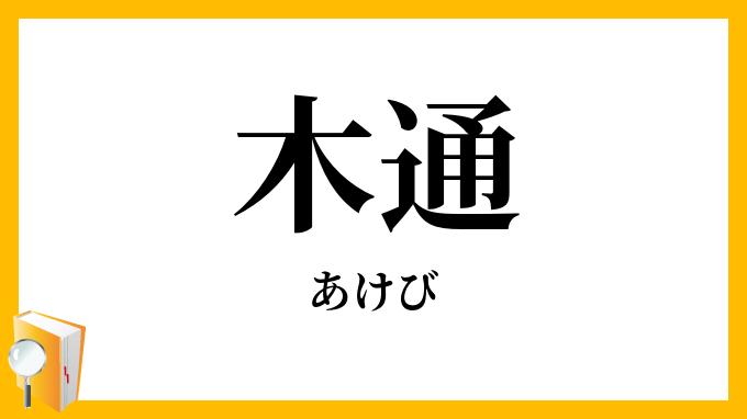 木通・通草